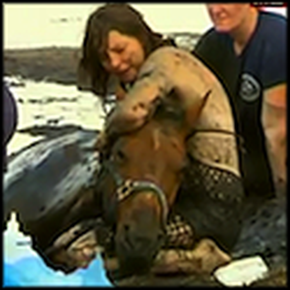 Woman Stays with her Horse in Quicksand for 3 Hours