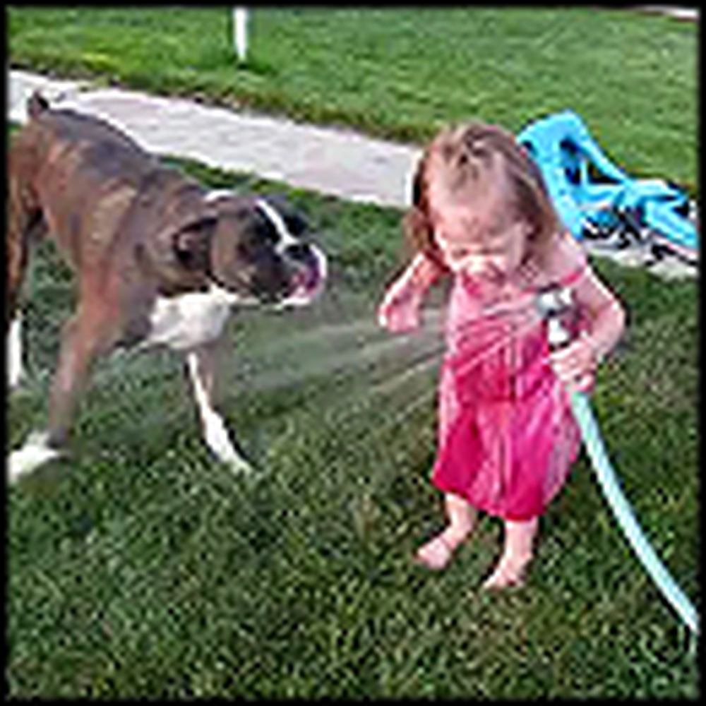 Boxer Teaches a Girl How to Drink From a Hose - So Cute