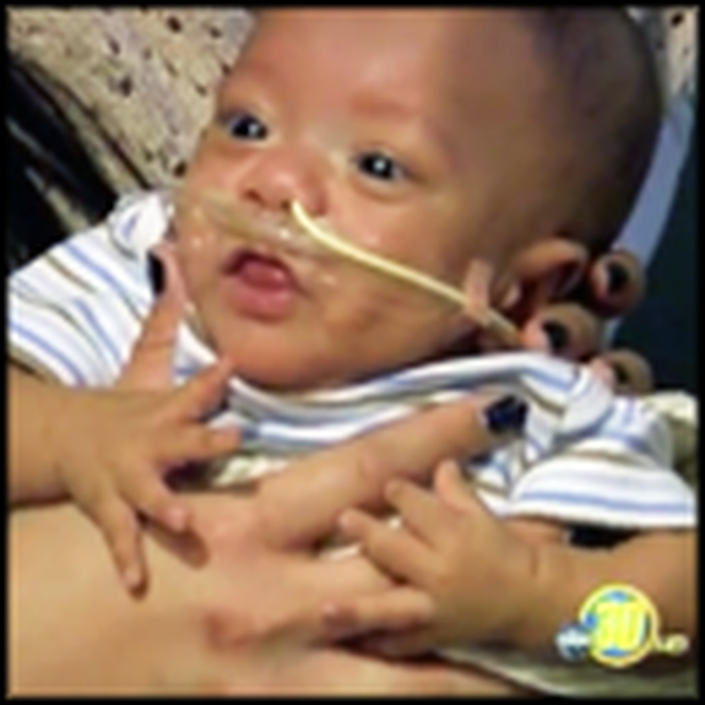 Tyson the Tiny Fighter and His Miracle Recovery