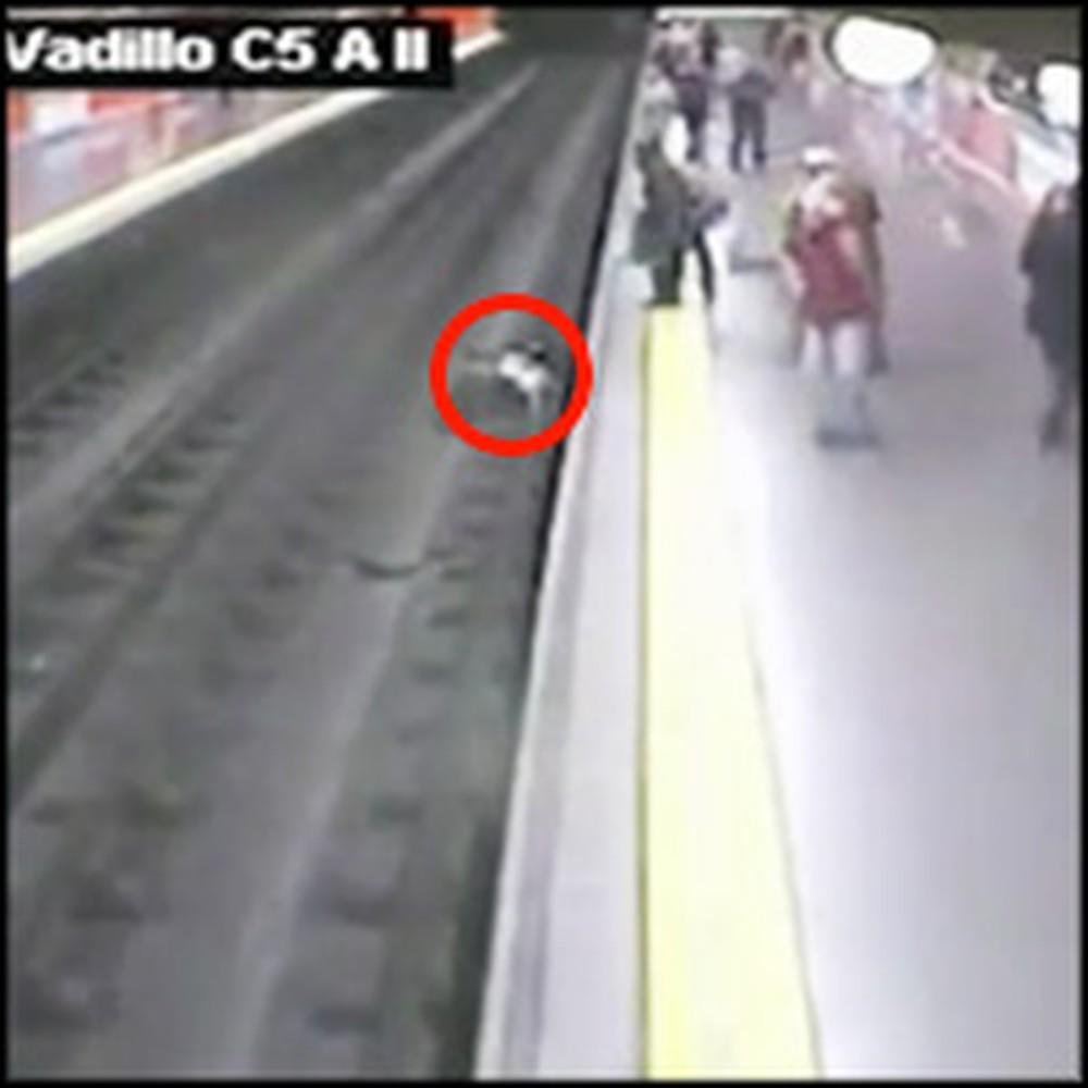 Policeman Saves a Woman Who Fell Onto Train Tracks