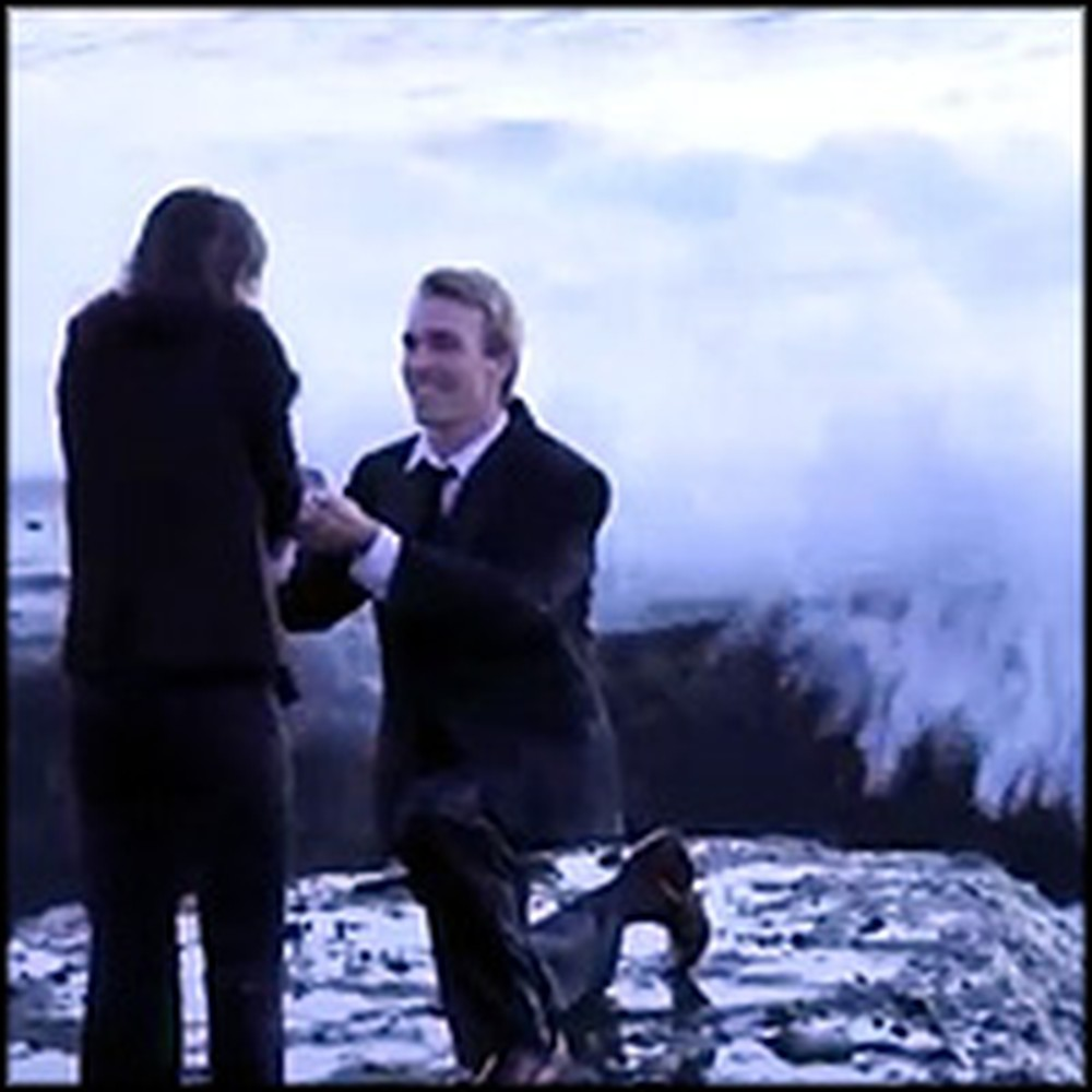Romantic Proposal Ends in the Funniest Way