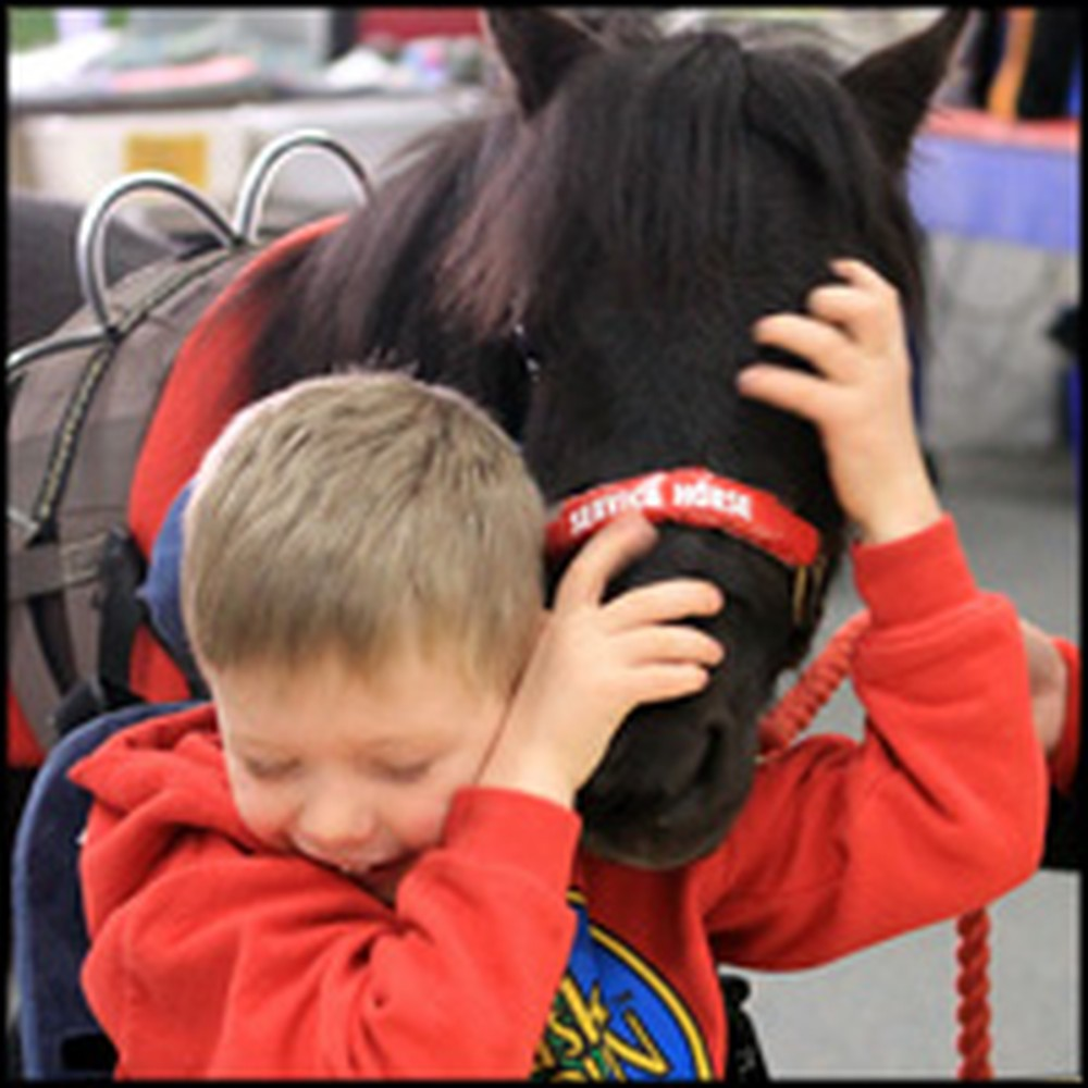 A Special Boy and His Miniature Horse - a Touching Tale