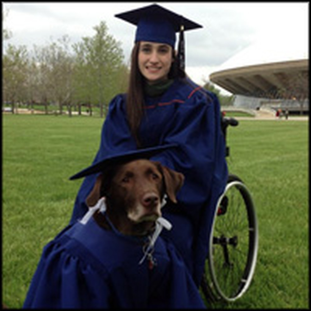 Service Dog Attends Graduation Ceremony with Owner - and Wears a Cap and Gown