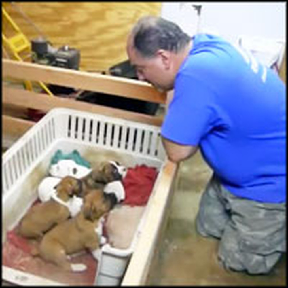 Tough Guy's Special Talent is Putting Puppies to Sleep