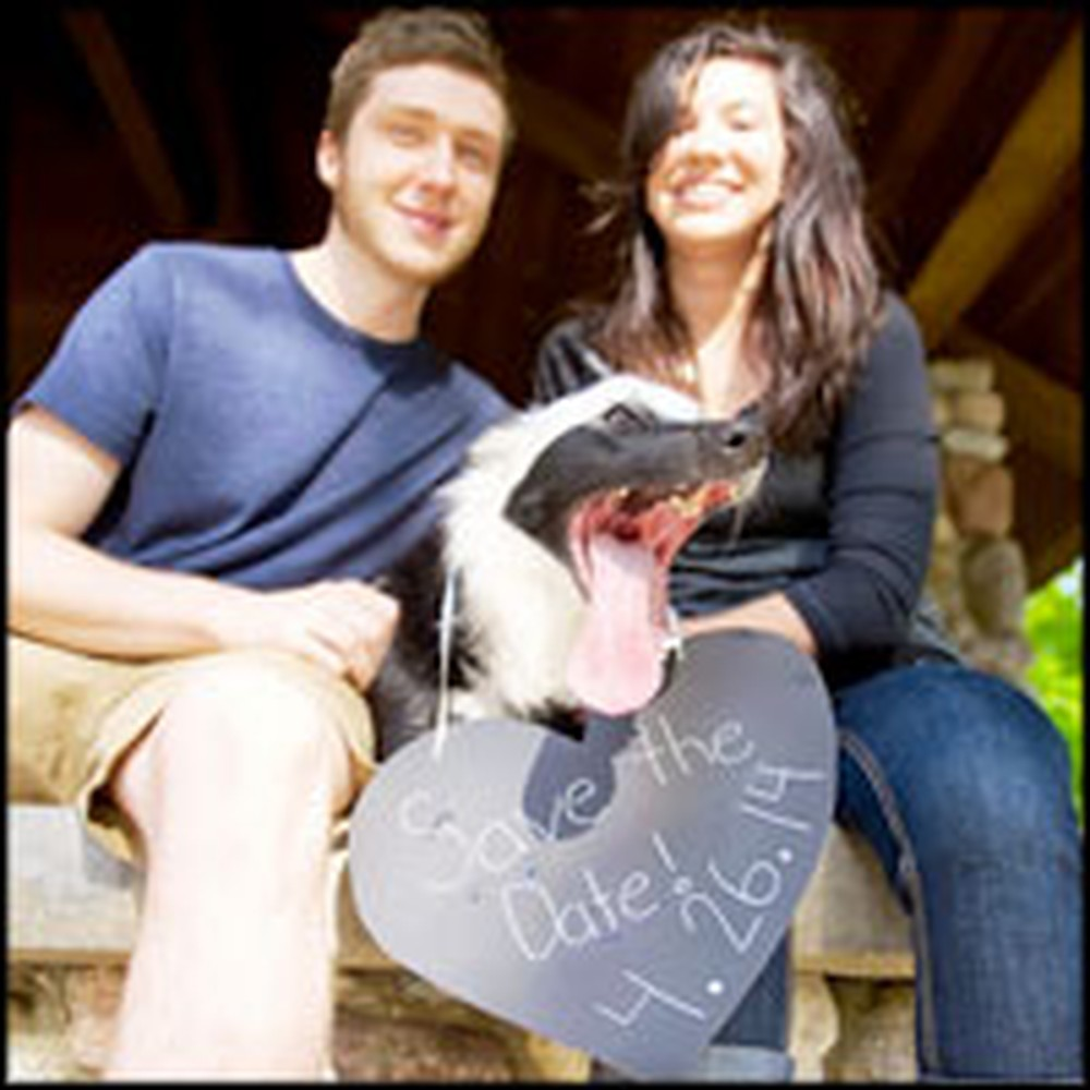 Dog Hilariously Photobombs Engagement Picture