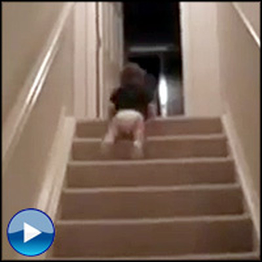 Clever Baby Finds Hilarious Way to Take the Stairs. That's an Improvement!