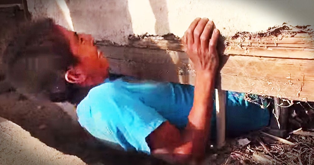 What This Man Found Under An Abandoned House Totally Shocked Me. But I'm SO Glad He Looked!
