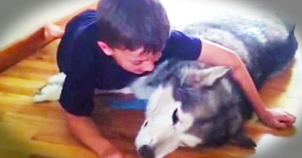 How This Boy Comforted His Sick Dog Is Heartbreaking. But He's a Little Ray of Sunshine!
