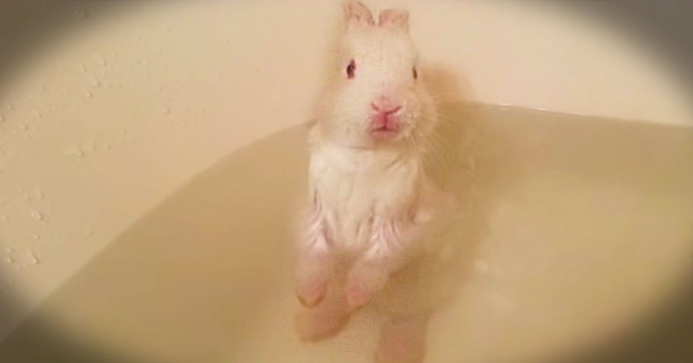 This Little Guy Is Taking His Very First Bath. And Yes, It Is Just As Precious As You Think It'll Be