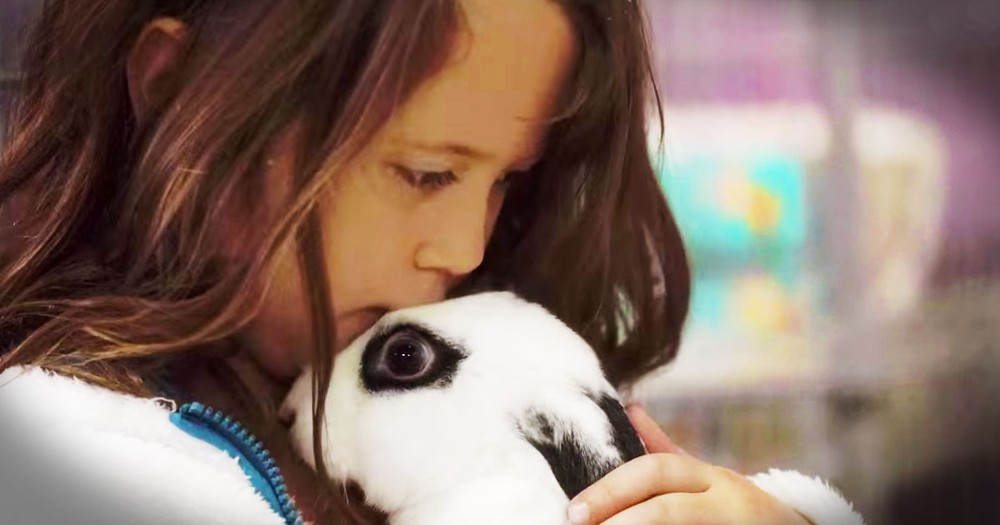 All She Wanted To Do Was Help God's Creatures. But How She Did It Is Turning Her Into A Celebrity!