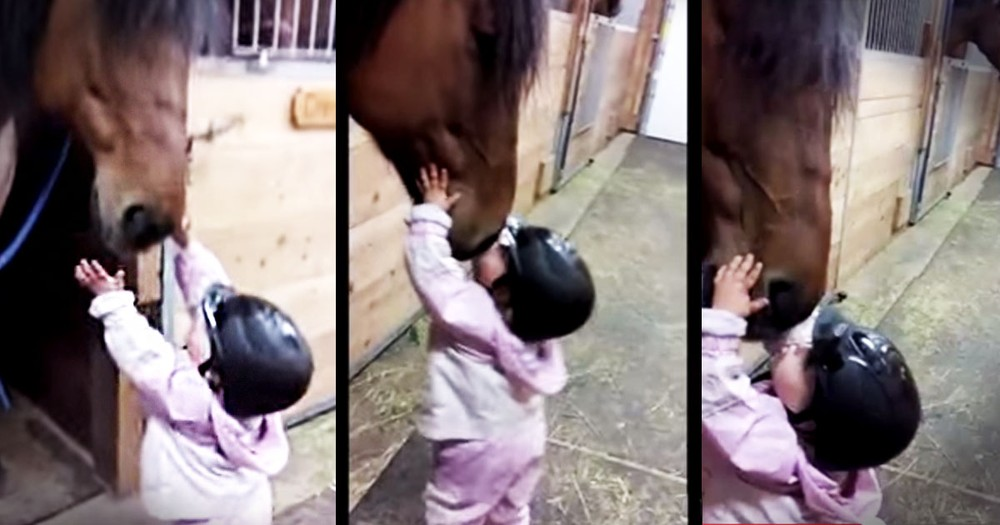 Precious Baby Kisses Her Horse Friend Goodbye--Aww!
