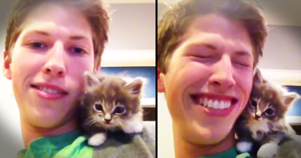 Sweet Kitten's First Meow Is Adorable