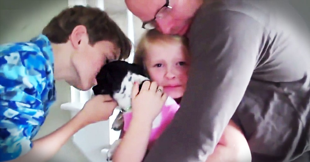 Best Compilation of People Getting Puppies for Christmas