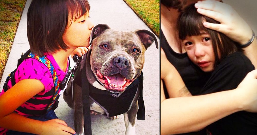 Santa Rejected Girl With Autism Because of Her Pit Bull Service Dog