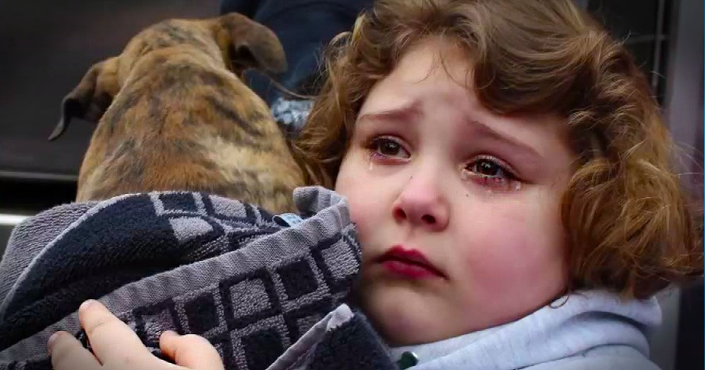 Emotional Girl Is Surprised With Pup She Thought She'd Lost Forever