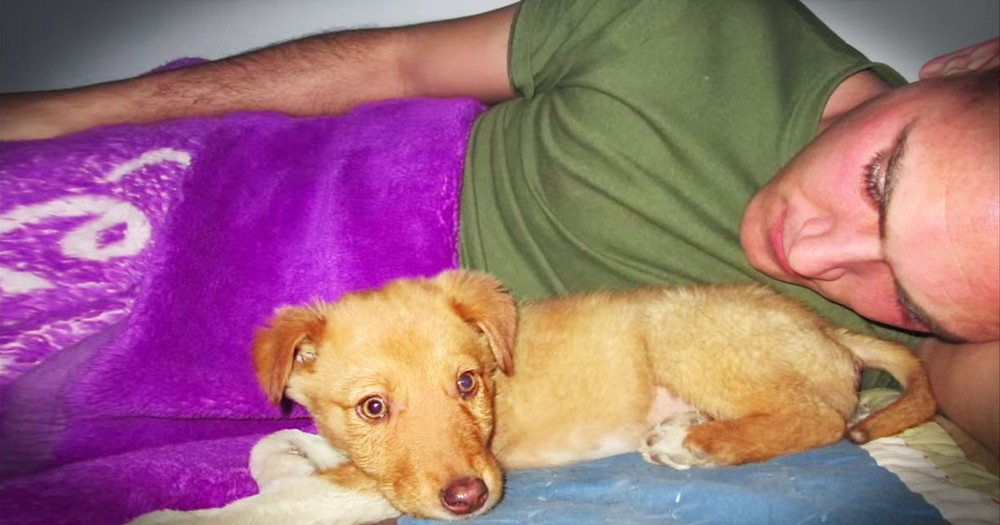 Marine Rescued A Shivering Puppy, And NOW They're Going To Reunite!