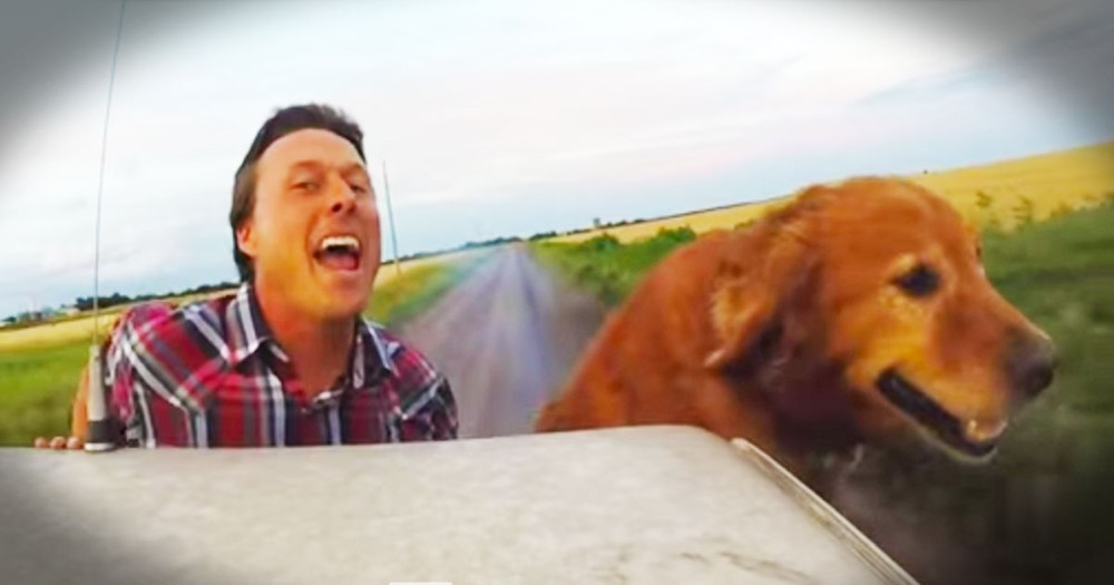 This Farmer's Parody Song Just Made My Day!