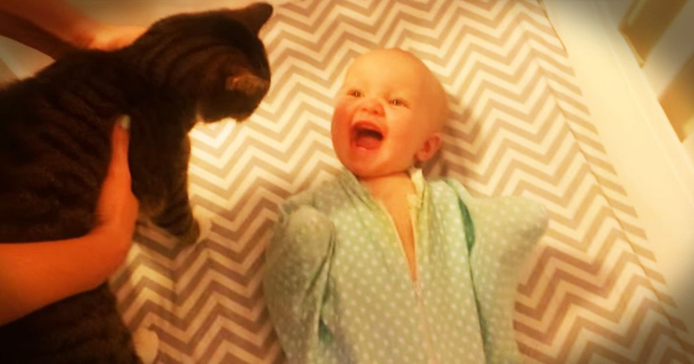 When Her Cat BFF Shows Up, The CUTEST Thing Happens!