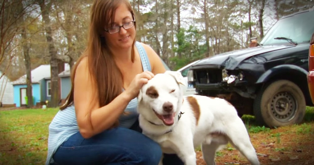 How Strangers Banded Together To Get This Dog Home Will Warm Your Heart
