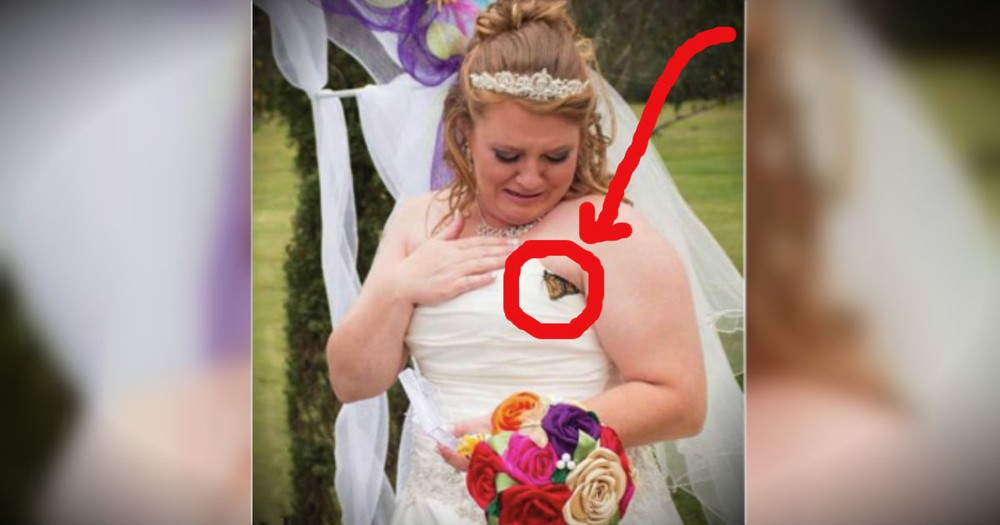 She Got A Very Special Sign From Heaven On Her Wedding Day