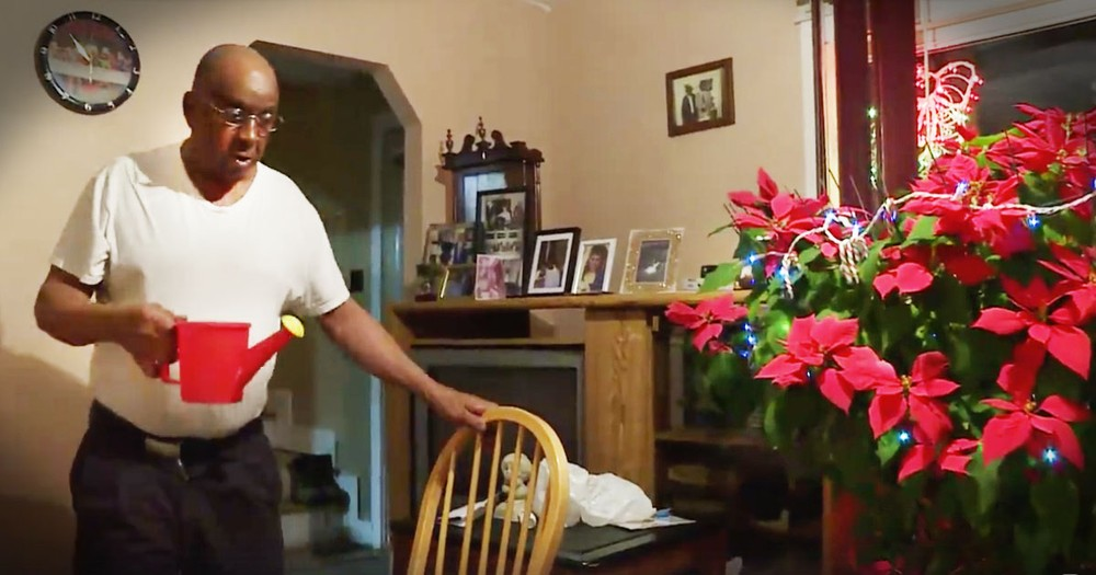 He's Grown This Poinsettia For 19 Years--All For His Late Wife