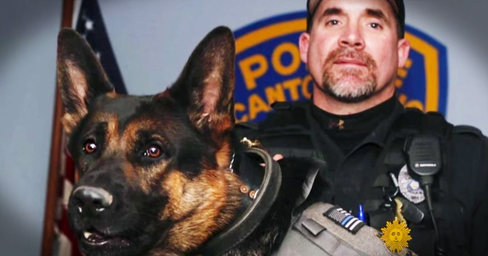 K-9 Officer Who Saved His Partner Remembered By Hundreds