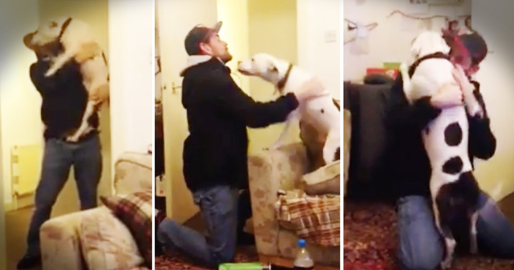 Rescue Dog's Welcome Home Is Too Cute