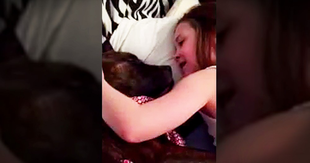Little Girl Singing Her Foster Dog To Sleep It SO Sweet