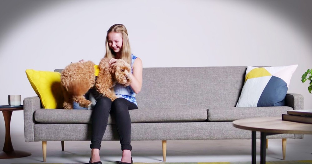 How Dogs Help With Stress Will Make You Smile