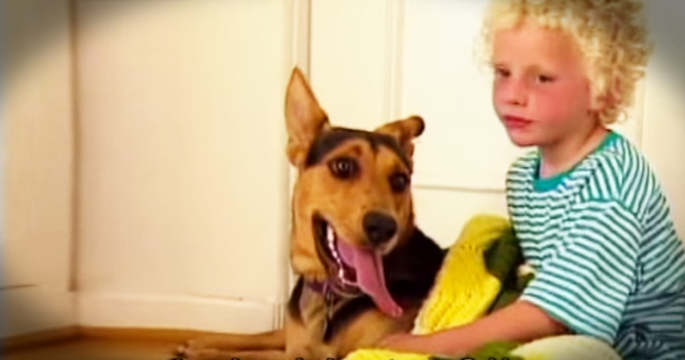 Unlikely Dog Changes The Life Of A Struggling Little Boy