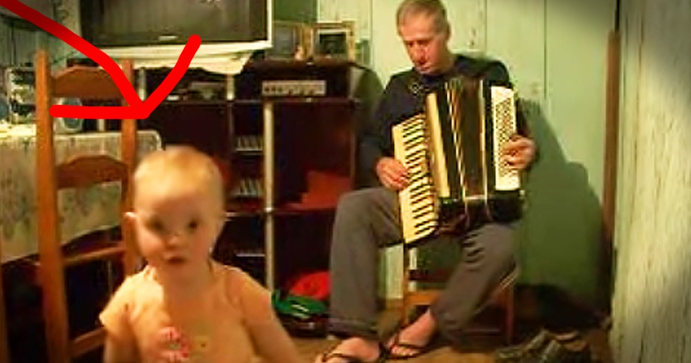 Little Girl's Adorable Dance Moves To An Accordion Made My Day