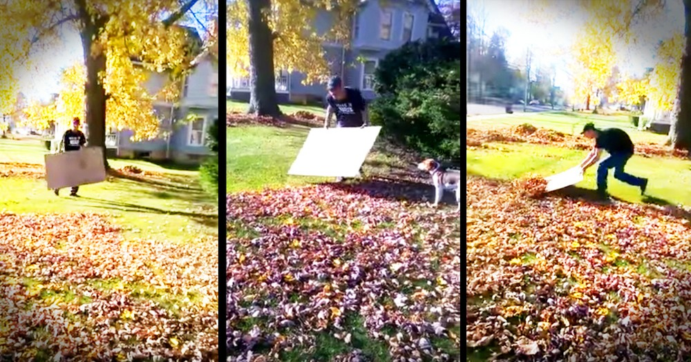 This Guy's Leaf Raking Hack Is Going To Save Fall
