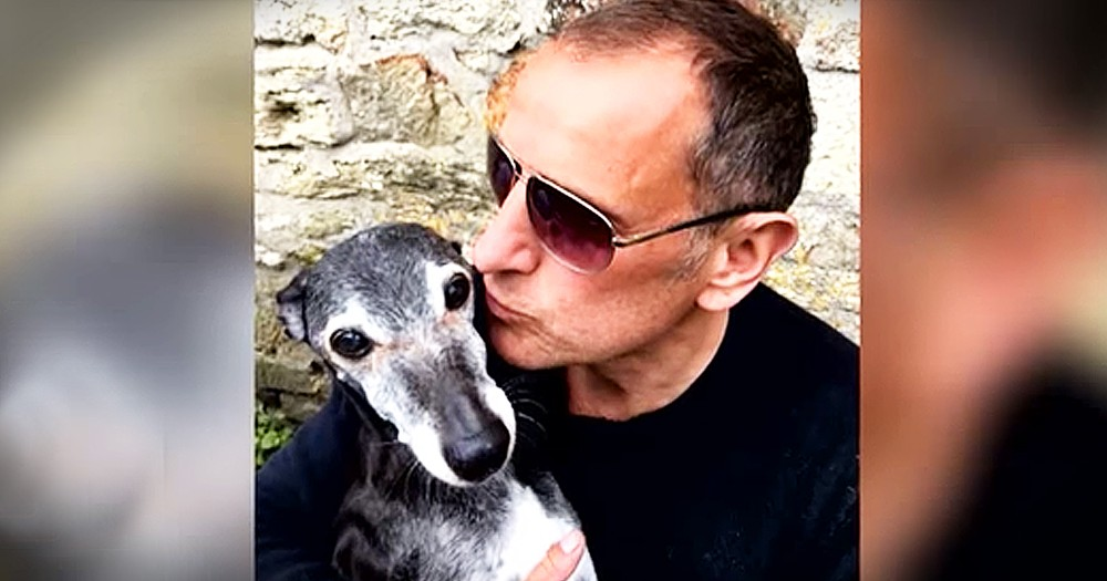 Man Takes Dying 18-Year-Old Dog On One Final Walk On The Beach
