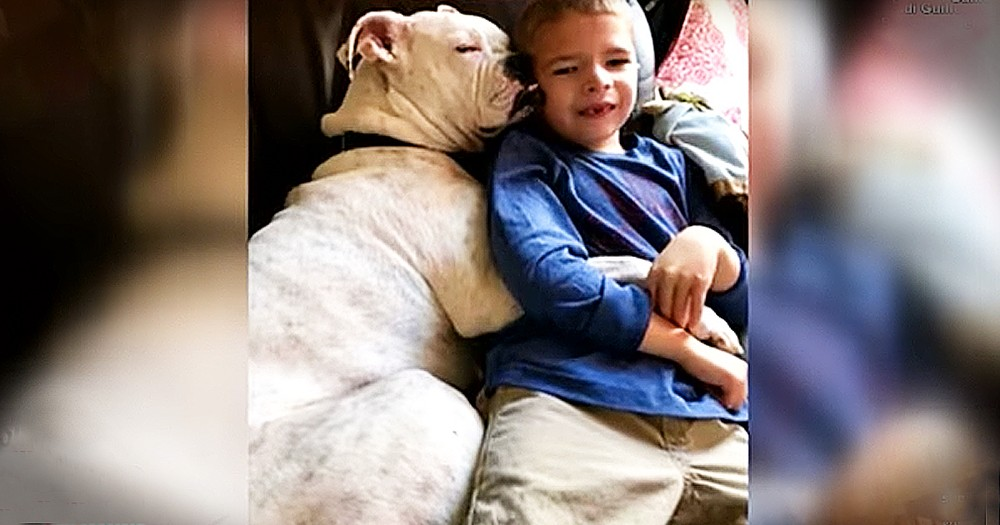 Deaf Boxer Understands Sign Language And Befriends Nonverbal 6-Year-Old