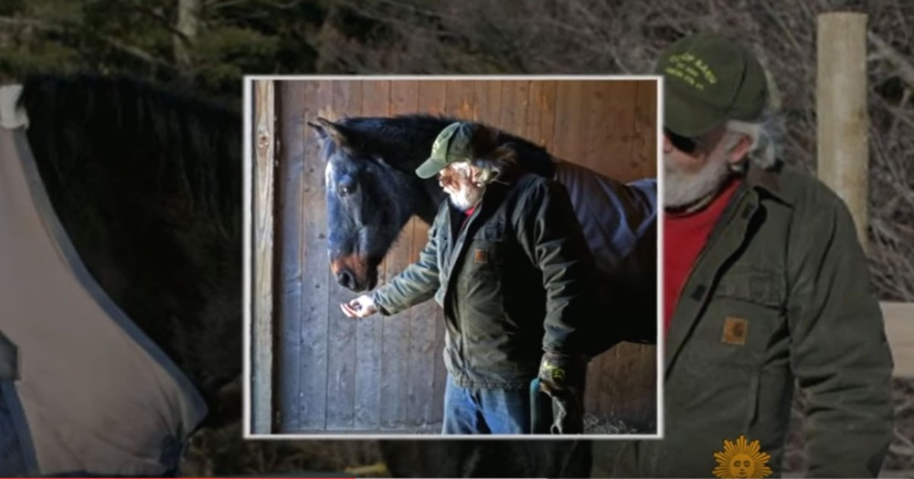 Grumpy' Older Man And His Old Horse Have A Friendship You Gotta See