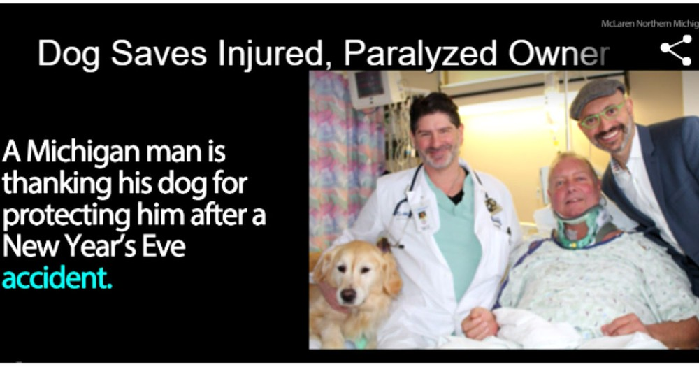 Dog Saves His Owner After Owner Falls In The Snow And Breaks His Neck