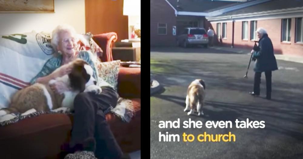 92-year-old Widow Gets Puppy Best Friend