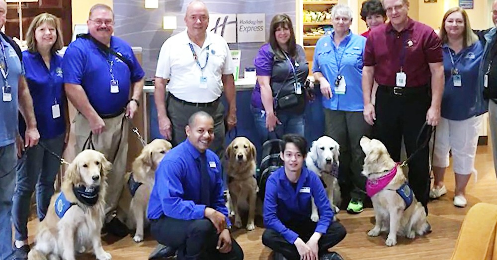 Service Dogs From All Over The Country Are Helping Las Vegas Victims Recover
