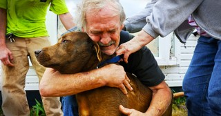 These 16 Strong Men are Brought to Their Knees by Puppies... #11 Made Me Melt Into A Puddle of Mush!