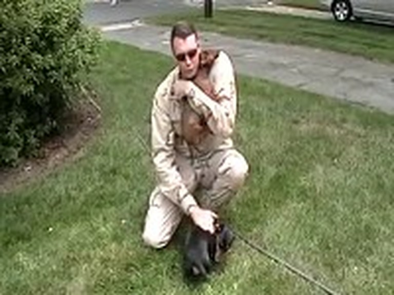 Soldier Reunites with his Very Excited Dachshunds