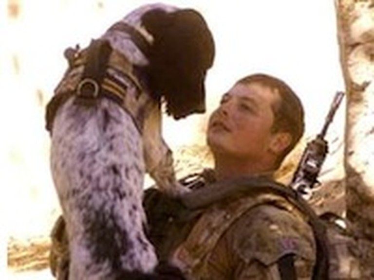 A Soldier and Dog Take their Final Journey Together