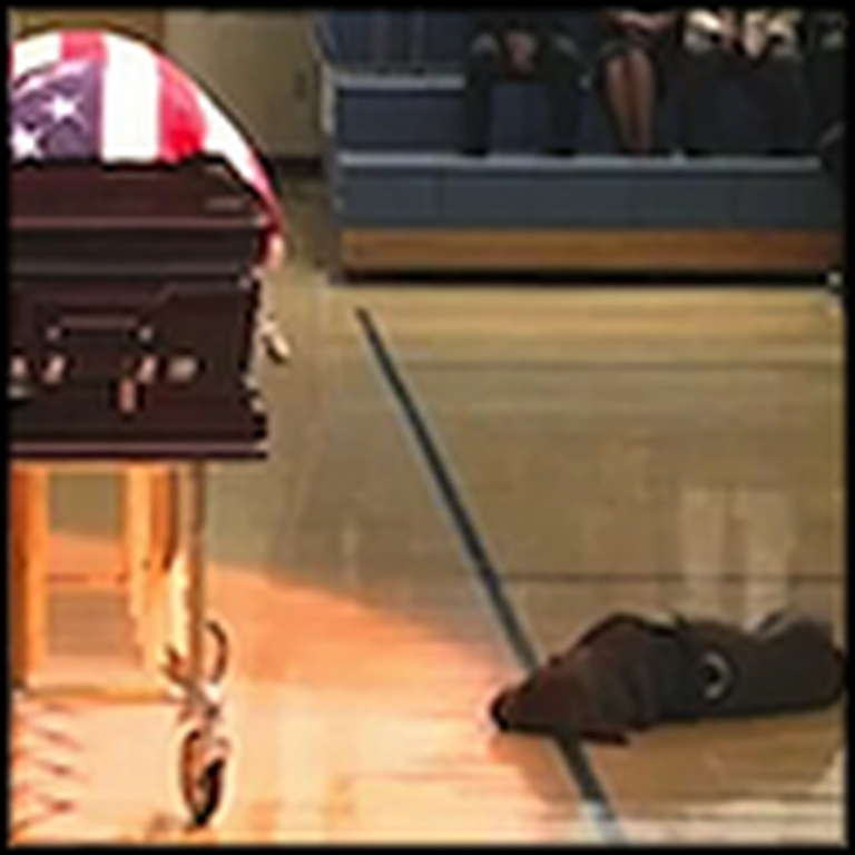 Dog Mourns the Death of a Fallen Navy Seal
