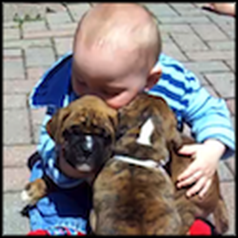 Baby and Two Puppies Will Absolutely Melt Your Heart