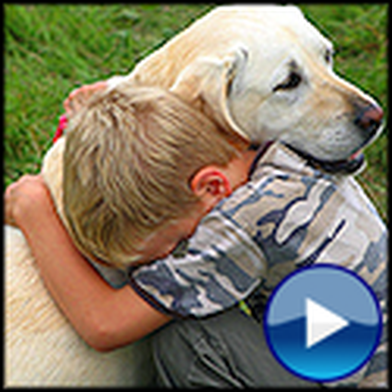 I Am An Animal Rescuer - a Touching Video for God's Creatures