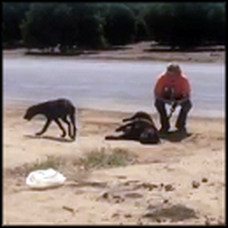Puppy Refusing to Leave his Mother's Side Gets Rescued