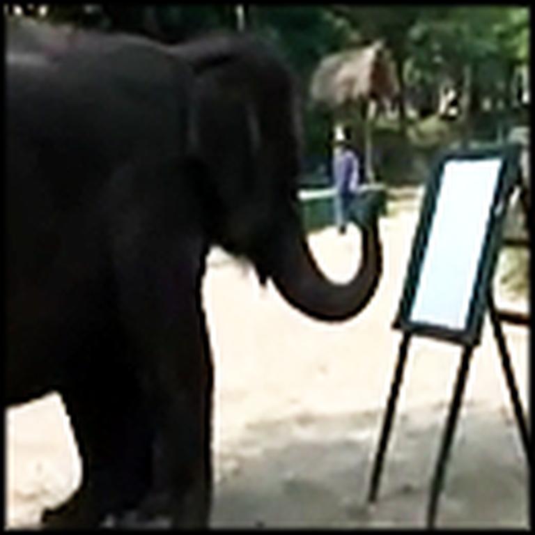 Special Elephant Paints Incredible Self Portrait