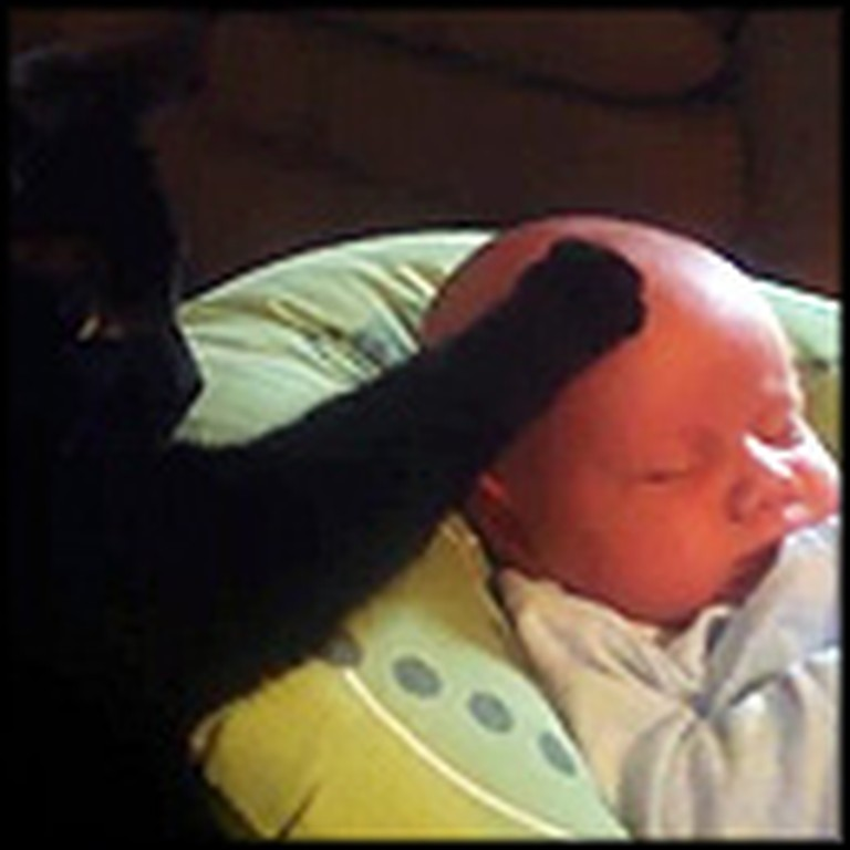 Crying Baby is Comforted by a Compassionate Cat
