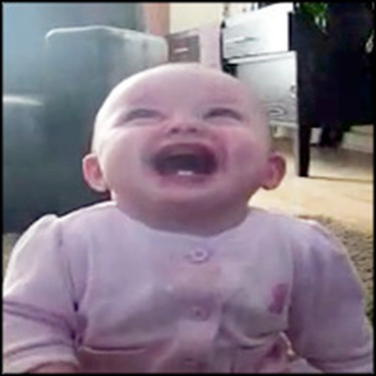 Darling Baby Laughs Uncontrollably at the Cutest Thing