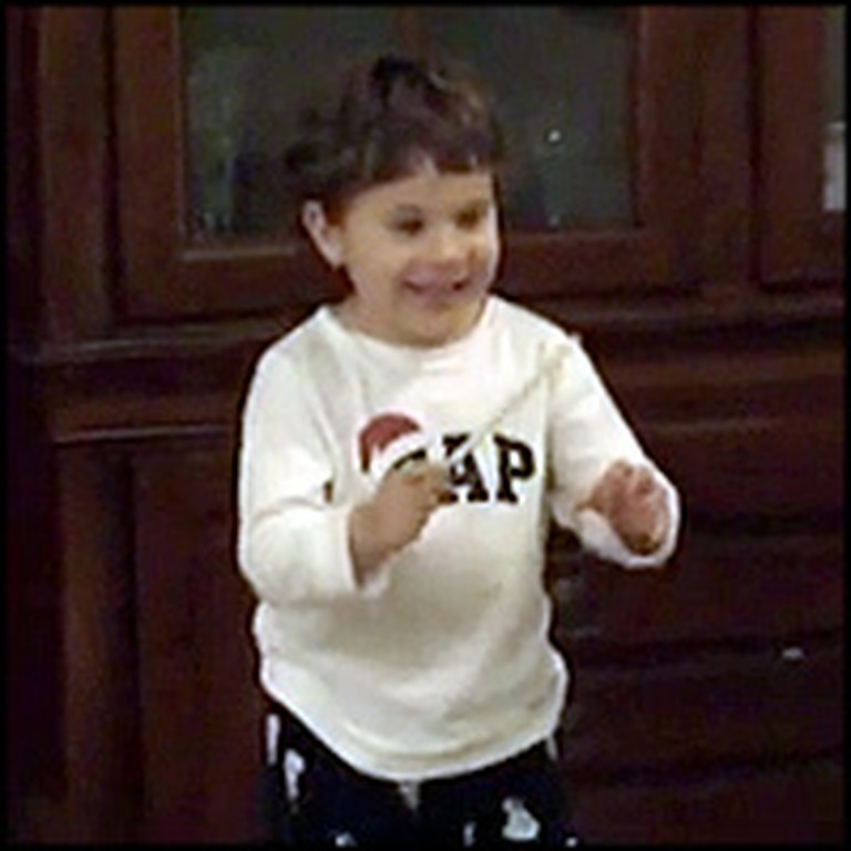Cute 3 Year-Old Conducts Beethoven Like a Professional