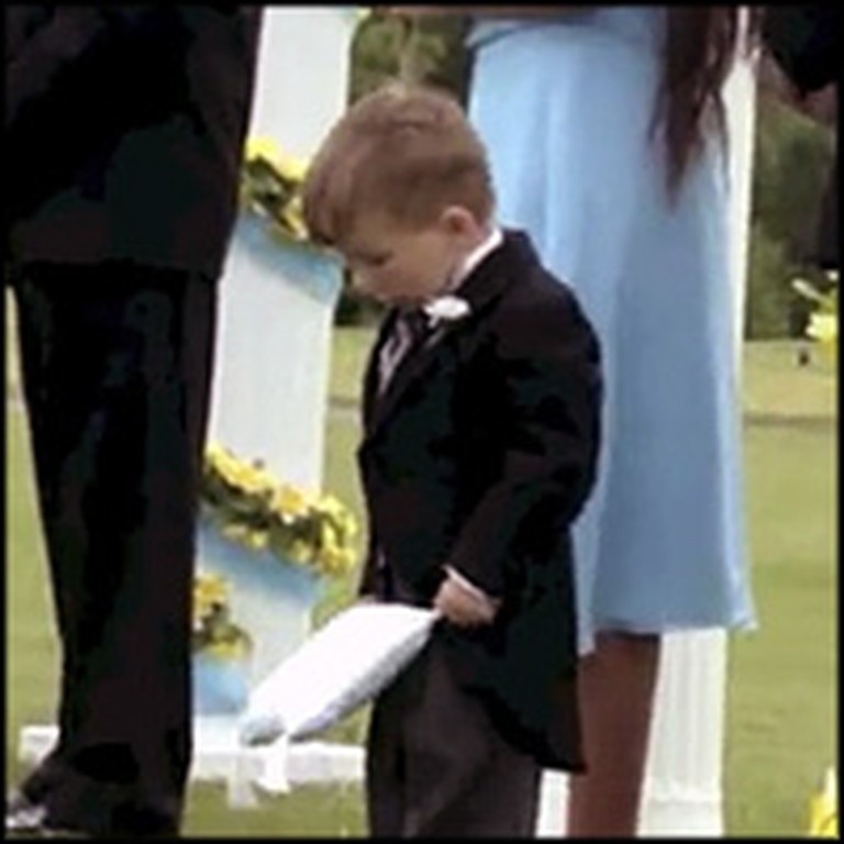 Compilation of the Funniest Ring Bearers at Weddings
